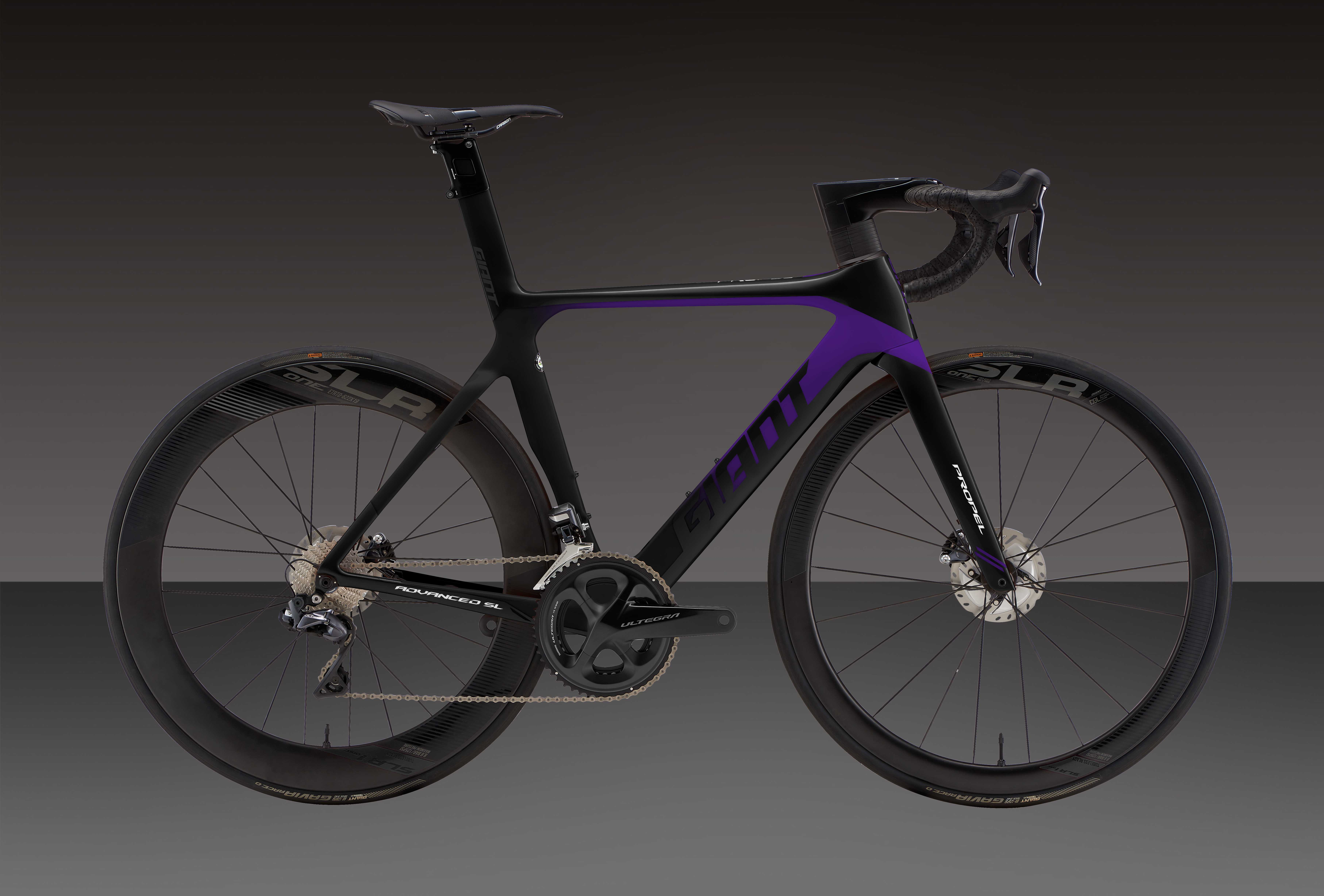 PROPEL ADVANCED SL DISC 塗裝自由選 TYPE. 3 Plus