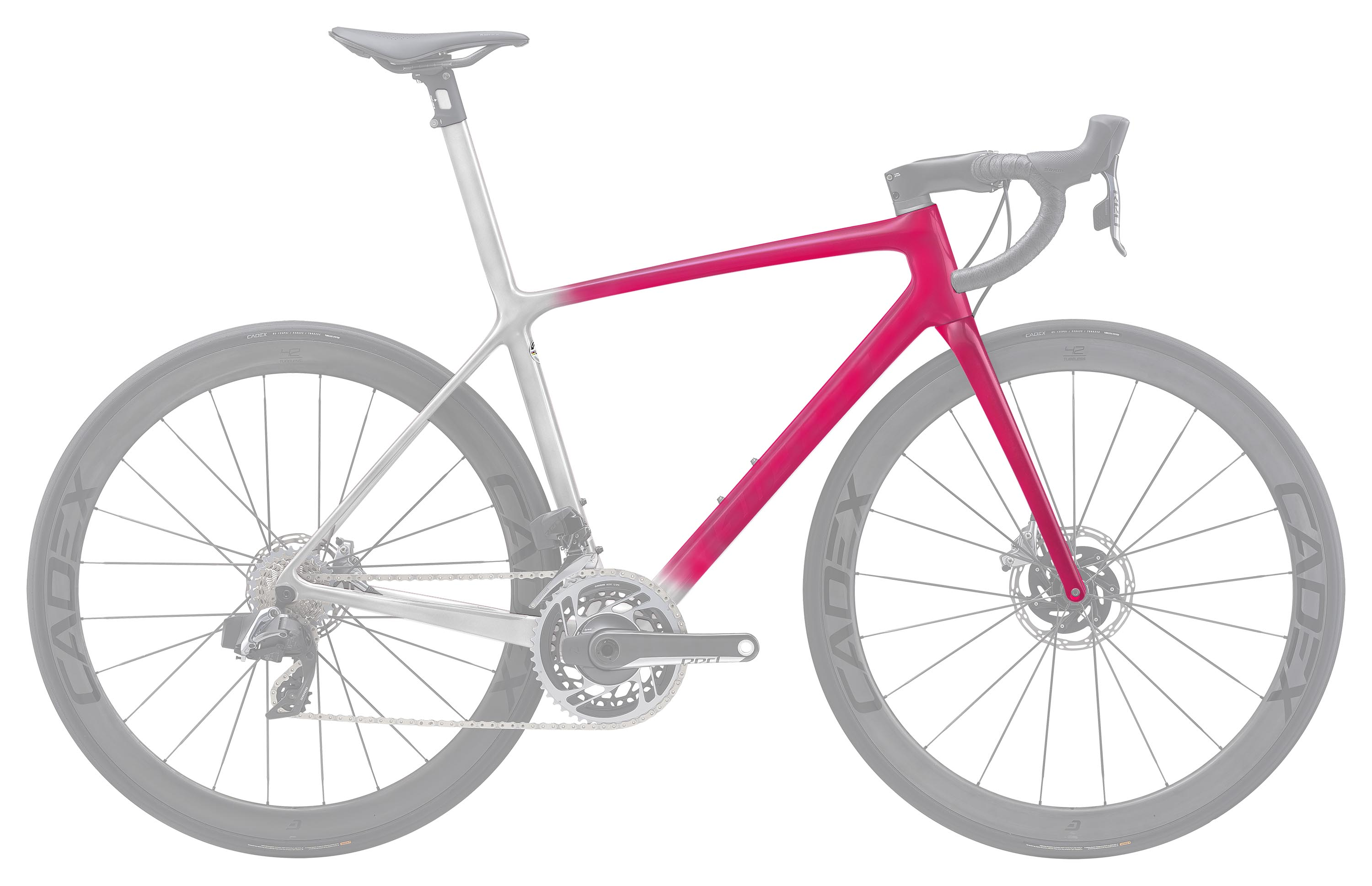 TCR ADVANCED SL DISC 塗裝自由選 TYPE. 1 Plus