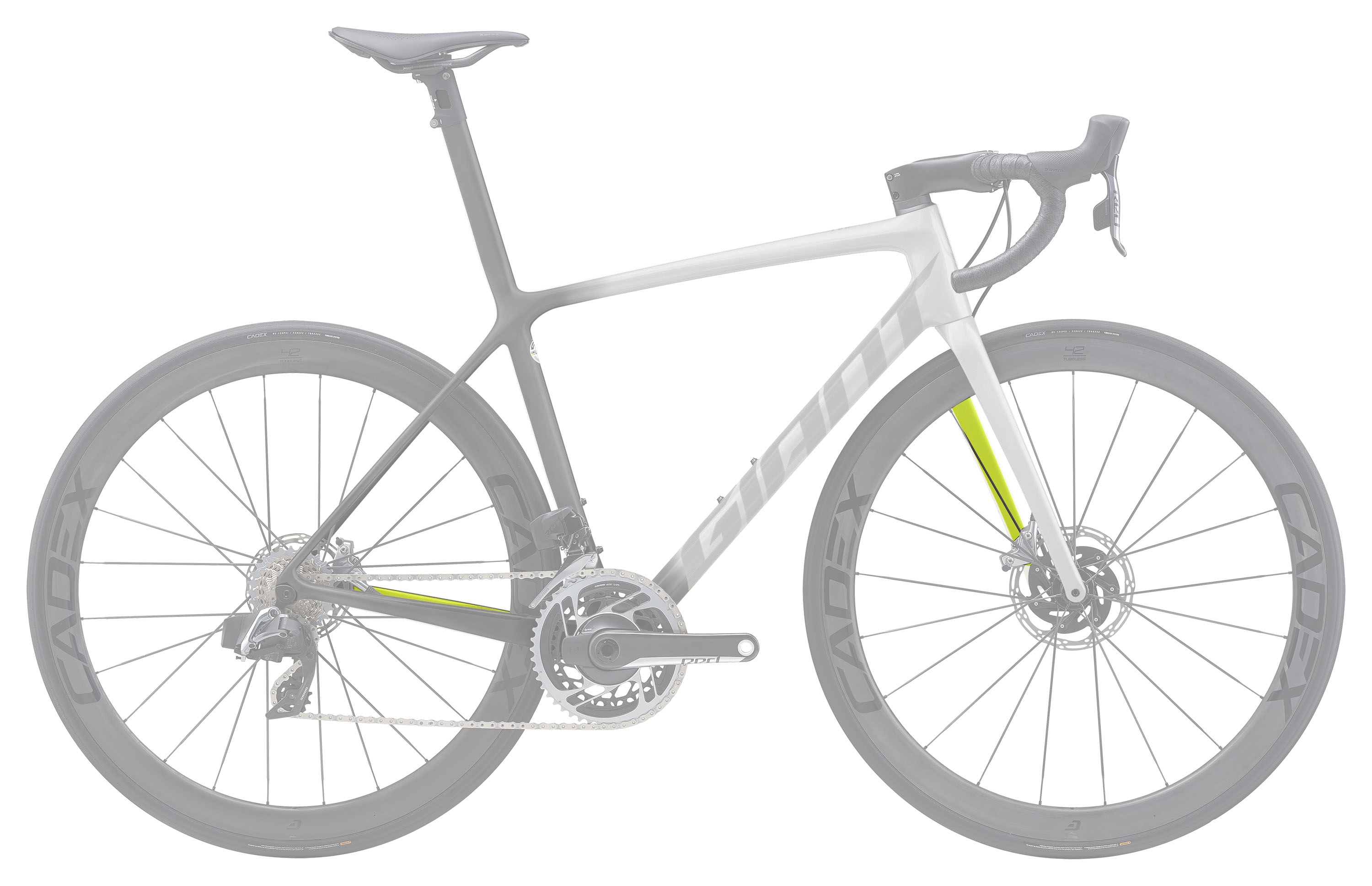TCR ADVANCED SL DISC 塗裝自由選 TYPE. 2 Plus